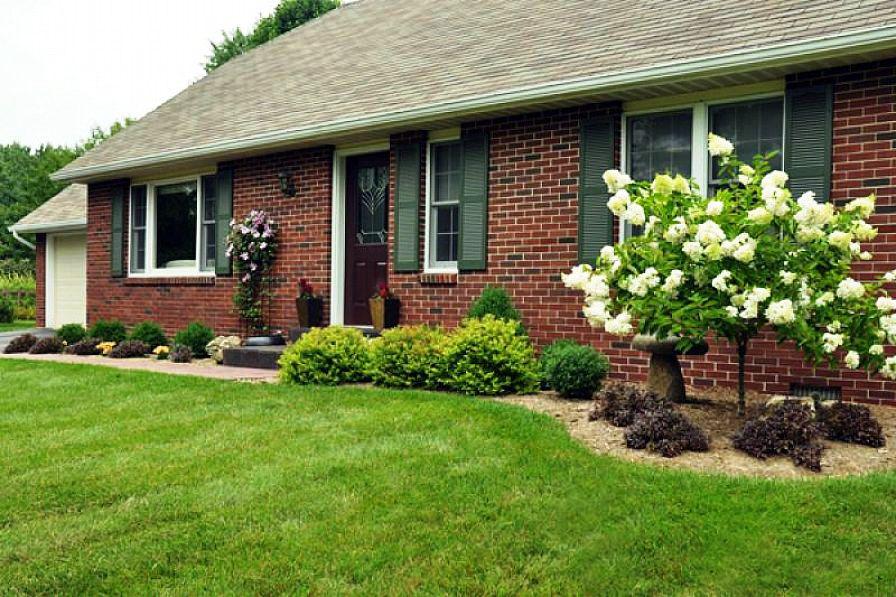 قدم اول در طراحی حیاط و باغ خانه های ویلایی